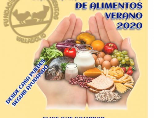 El VRAC, con el Banco de Alimentos de Valladolid